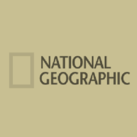 3D pavement art for National Geographic